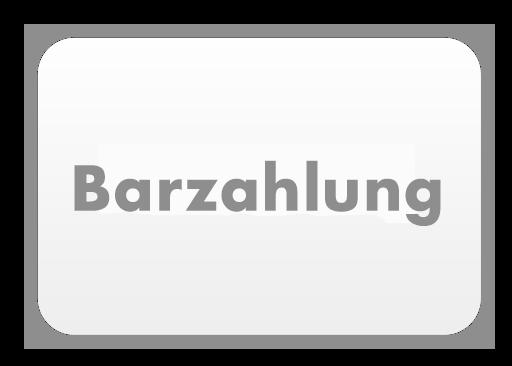 umzugspartner Berlin Barzahlung